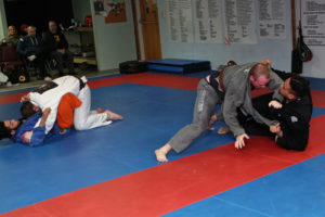 Shaddock Belt Test 26