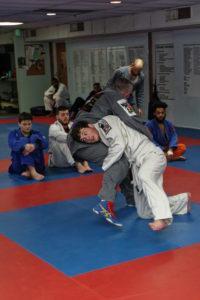 Shaddock Belt Test 33