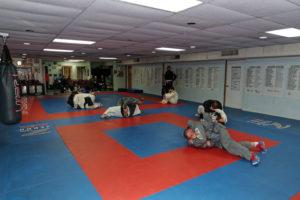 Shaddock Belt Test 34